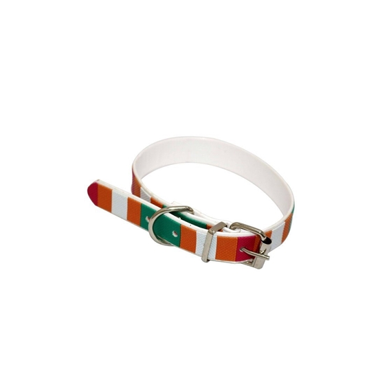 Picture of Dog Collar Belt