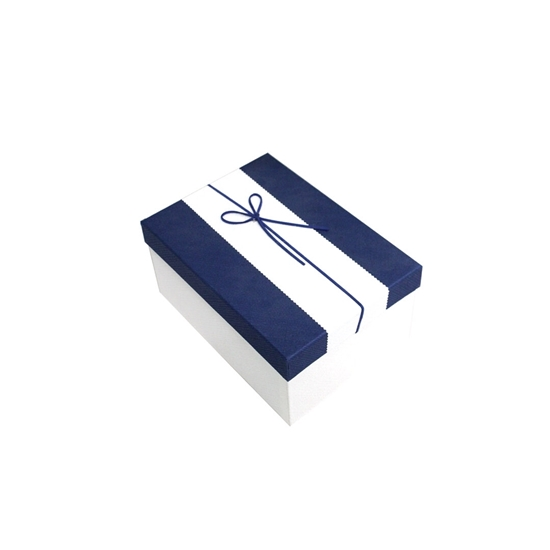 Picture of Blue & White Gift Box - 22 x 16 x 10 Cm