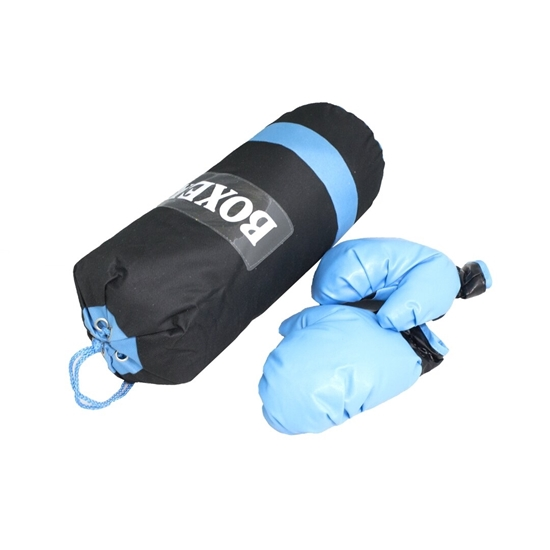 Picture of Punching Bag & Glove Set (for children)