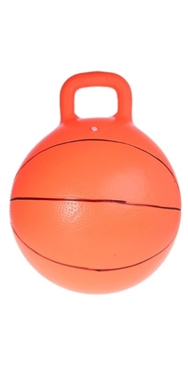 Picture of BASKETBALL HOPPER BALL