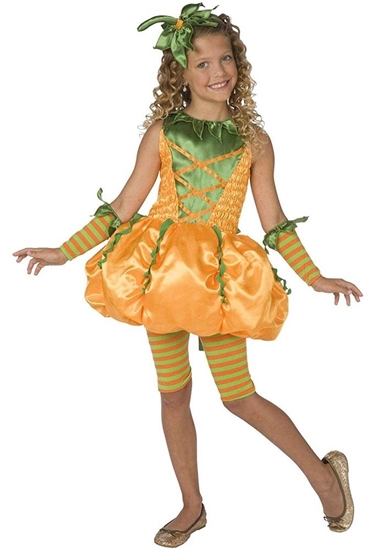 Picture of PUMKIN COSTUME