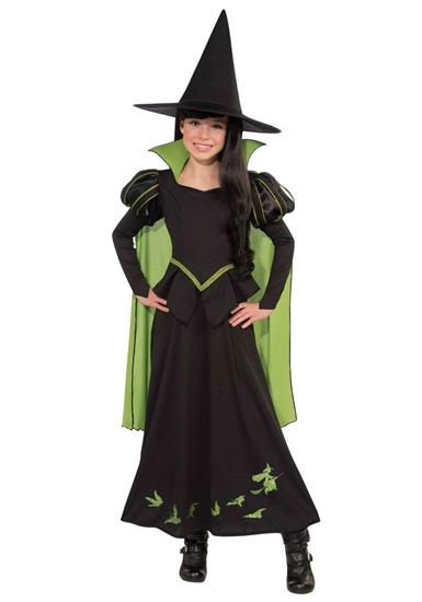 Picture of WICKED WITCH OF THE WEST COSTUME