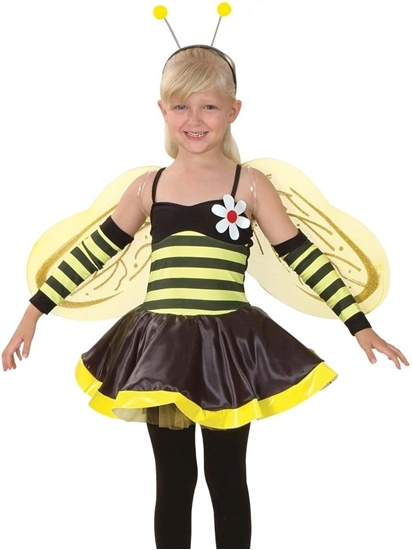 Picture of BEE GIRL COSTUME