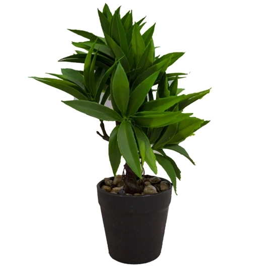 Picture of Artificial Potted Plant - 27 x 7 Cm