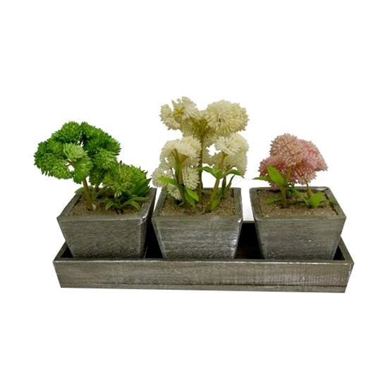 Picture of Set of 3 Assorted Color Artificial Flower Plants - 18 x 28 x 9 Cm