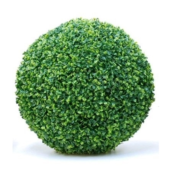 Picture of Artificial Plant - 50 Cm