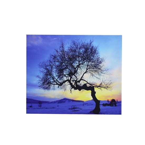 Picture of Printed Canvas - 60 x 50 Cm