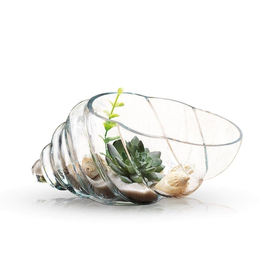 صورة Snail Shape Clear Glass Bowl - 10 x 25 Cm