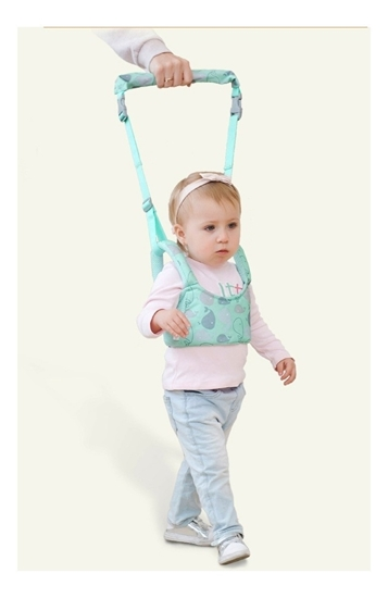 Picture of Baby Walking Assistant